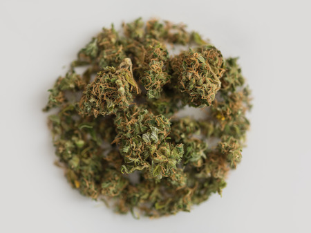 weed: Pinch of Cannabis in circle shape on white background Stock Photo