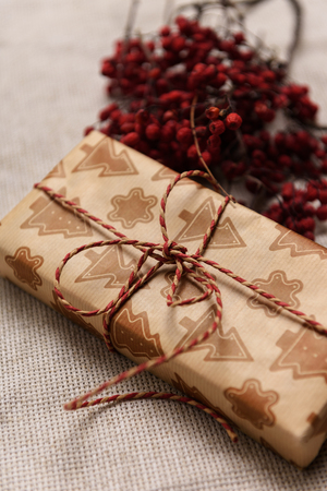 eberesche: Weihnachtsgeschenk mit Vogelbeere