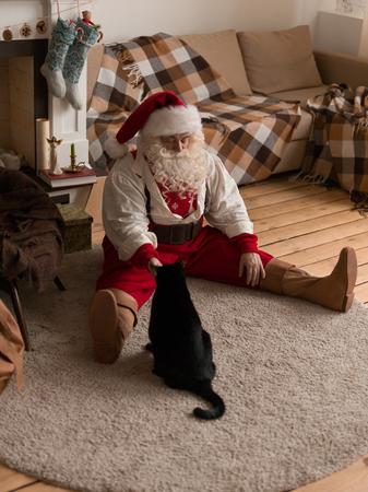Santa Claus Feeding Cat at Home Standard-Bild