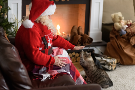 Santa Claus Warming Feeding his Cat at Home Imagens