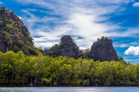 geoforest: Langkawi Rainforest Boat Tour Stock Photo