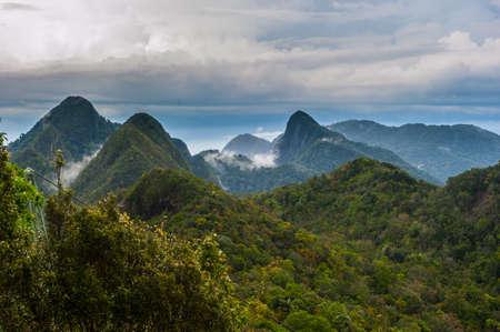 langkawi: Langkawi Rainforest Fog