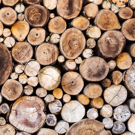 ウッド テクスチャ背景多くのログがある大きな木小さな木からを切って 写真素材