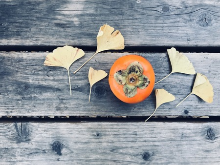 "ripe orange persimmon and six yellow ginkgo leaves on wooden bench with copy space on left side of frame, shoot from top view, ""winter is coming"" concept"