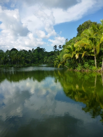 Reflection of cloudy in pond in Malitime resort, Krabi province, Thailand