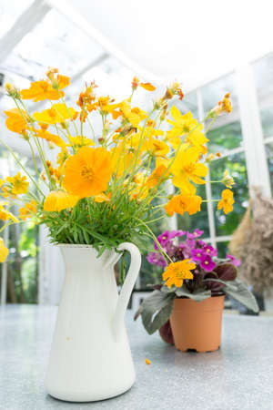 Decorative yellow flowers in the white jug under the glass house