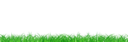 Grass field abstract background vector illustration in long horizontal