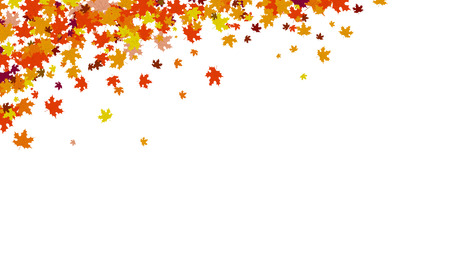 Autumn background, thanksgiving concept, maple leaves scatter cluster in nature vector illustration
