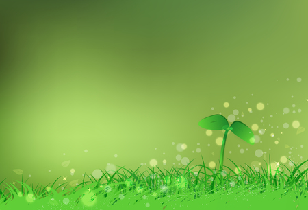 Sapling of tree with grass field freshness blurry Bokeh stars scatter shine nature concept abstract background vector illustration Ilustração Vetorial