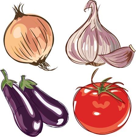 berenjena: Ingredientes  Vectores