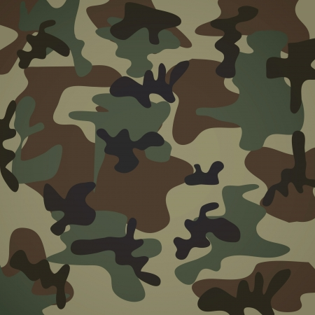 military uniform: camouflage pattern