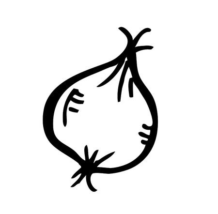 garlic doodle Vector