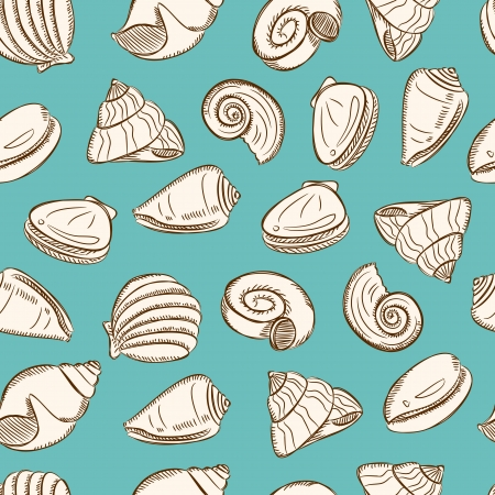 sea shells background Vector