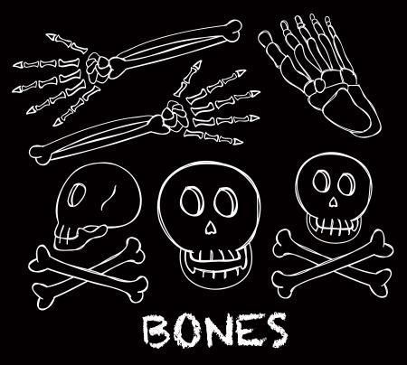 skeleton doodle Stock Vector - 16034141