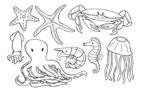prawns: sea animal Illustration