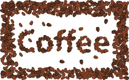 coffee bean typography  Vector