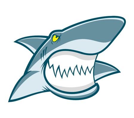 white shark: Shark mascot Illustration
