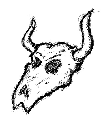 Hand drawn buffalo skull Vector