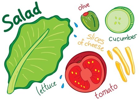 salad doodle Vector