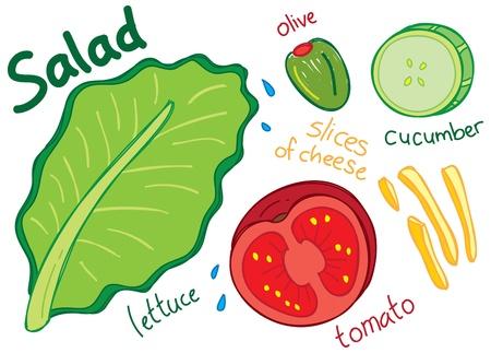 food dressing: salad doodle