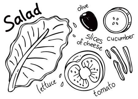 salad dressing: Salad in doodle style