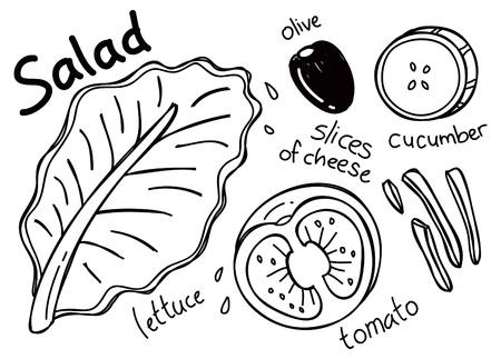 salatdressing: Salat in Doodle-Stil