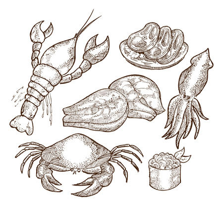 set of sea food Vector