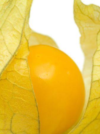 half open: A close-up of a half open physalis.