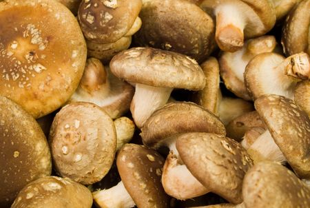 A background of fresh shiitake mushrooms Stock Photo