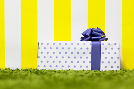 Gift Box on Bright Background. Copy Space
