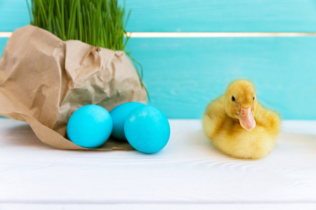 Cute Ducklings with Easter Eggs on a Bright Background. Spring Concept