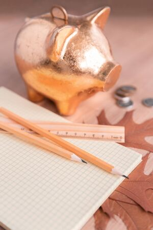 Autumn Still Life with Ruler and Pencils on Piggy Bank Background with Coins Stock Photo