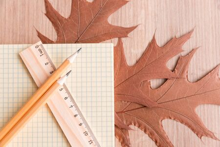 Autumn Still Life with Ruler and Pencils Wooden Background Stock Photo