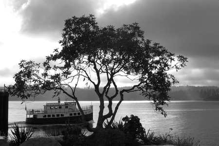 forsale: Vintage Ferry Boat Editorial