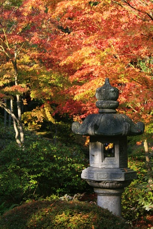 View of Japanese Lantern in the foreground right. Background of various japanese maple trees showing beautiful fall coloring.Japanese Garden,Washington Park Arboretum,Seattle.  photo