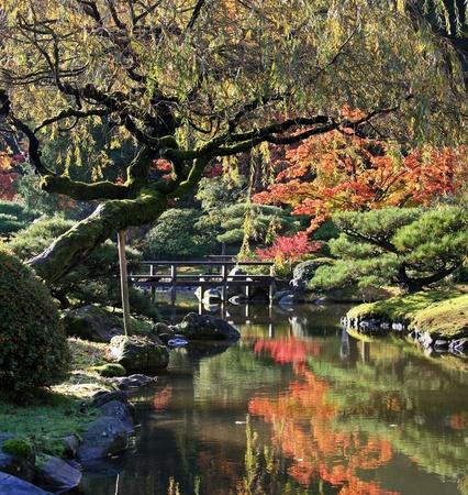 Bekijk reflecteren vijver op de voorgrond met een voet brug centrum vertrokken, samen met Japanse esdoorns op de achtergrond weerspiegeld in het water below.Japanese Tuin, Washington Park Arboretum, Seattle. Stockfoto
