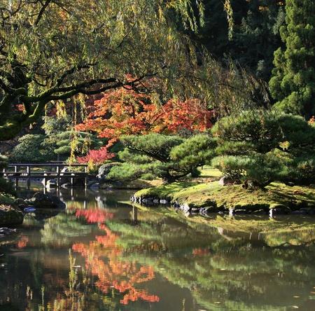 vlonder: Bekijk reflecteren vijver op de voorgrond met een voet brug centrum vertrokken, samen met Japanse esdoorns in de background.Japanese Tuin, Washington Park Arboretum, Seattle.