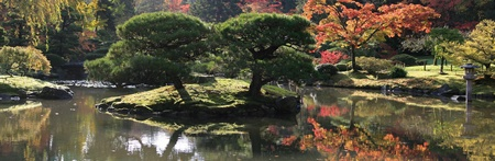 arboretum: Panoramic view with a small island containing two trees and various japanese maples in the background. From the Japanese Garden,Washington Park Arboretum,Seattle.  Stock Photo