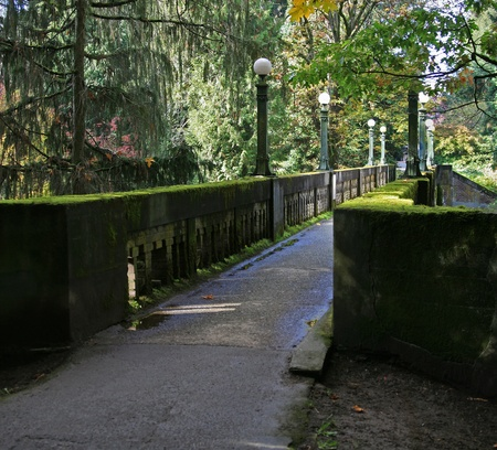 arboretum: Concrete foot bridge covered in moss. Looking from right side down length of bridge. Washington Park Arboretum,Seattle.