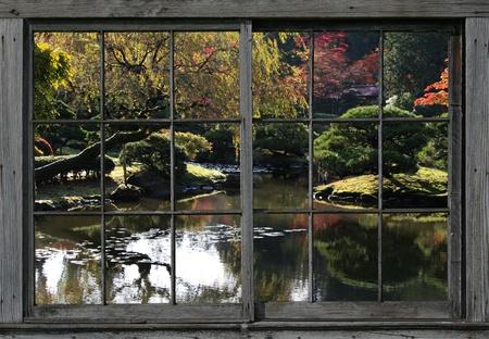 Herfst bij het Arboretum, Japanse tuin, in het Park van Washington, Seattle. Bekijk van reflecterende vijver met lilly pads, een klein eiland, en vallen kleuren op de achtergrond, al bekeken door een ouderwetse, hout omlijst, verdeeld licht venster.