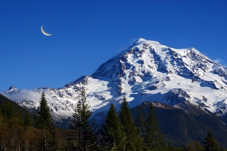 sized: Landscape view of Mt Rainier taken during summer time.Crescent moon to the left and foreground showing many different sized douglas fir trees.