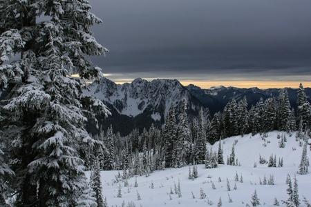 hemlock: Foto del paisaje del estilo que muestra la nieve, los árboles cubiertos de nieve y un cielo gris muy oscuro