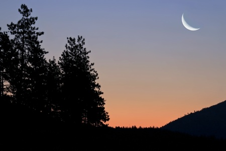 crescent: Landscape style photo showing a crescent moon, morning sunrise of blue and orange over the rocky mountains in Montana silhouetted and to the left the silhouetted view of trees.