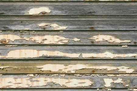 pealing: Yellowed peeling white paint on vintage beveled wood siding