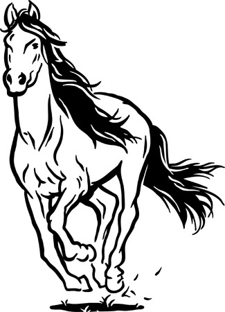 horses in the wild: Running horse Illustration