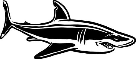 tail fin: Tibur�n ilustrado