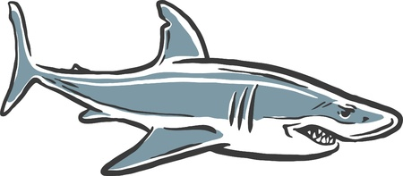 fin swimming: illustrated shark