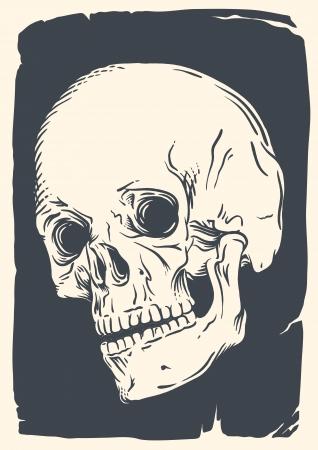 빈티지 깨진 종이에 고립 된 두개골 그림