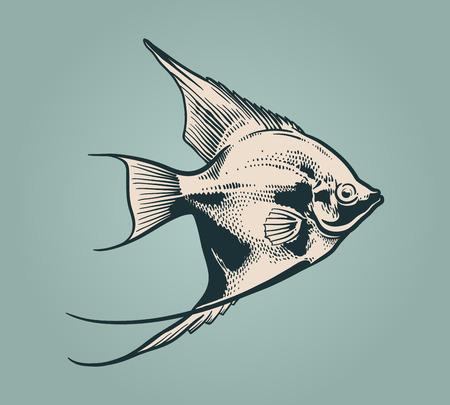 Vector vintage illustration of little fish over blue background