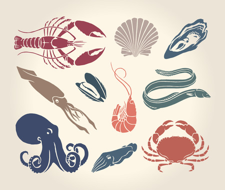 Vintage illustration of crustaceans seashells and cephalopods